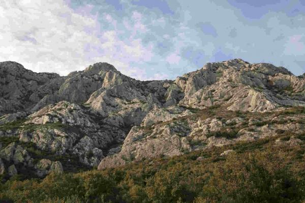 14615848874379-grotte_aux_champignons16_avril_2016_5